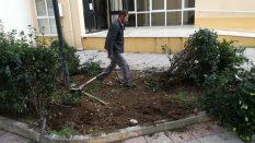 A Blok girişlerindeki bodur ağaç sökme işlemi tamamlandı